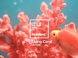 Pantone Living Coral - Cor do ano 2019